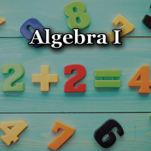 Summer Algebra 1 Course