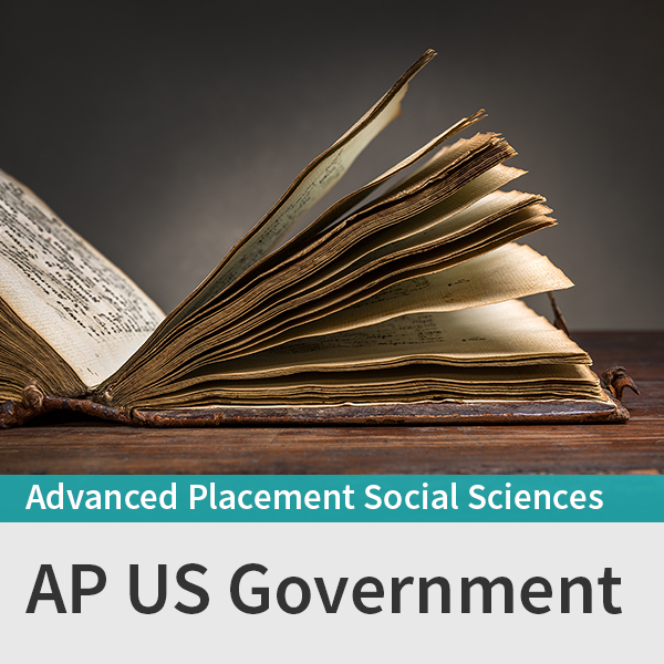 AP US Government course picture