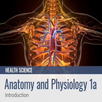 Anatomy and Physiology 1a: Introduction