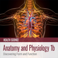 Anatomy and Physiology 1b: Discovering Form and Function