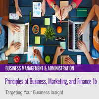 Principles of Business, Marketing, and Finance 1b: Targeting Your Business Insight
